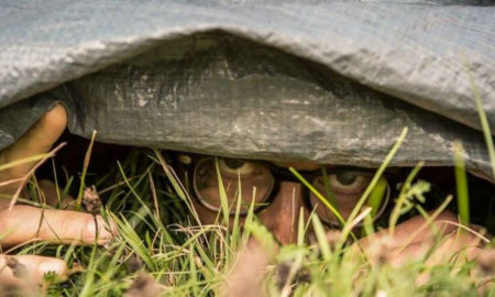 Hide and seek world champion remains missing.